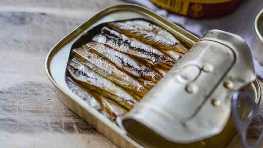 Diabético Pode Comer Sardinha em Lata - Fala sério Diabetes